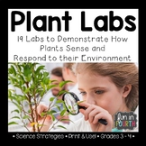Plant Labs - Investigate How Plants Sense and Respond to their Environment