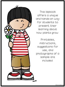 Plant Lapbook