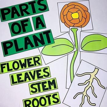 Plant Lapbook Interactive Kit