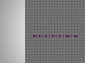 Plant Leaf Foldable Notes