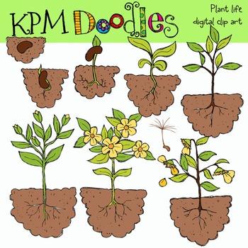 Plant Life Clip Art COMBO