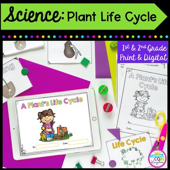 Plant Life Cycle- 1st & 2nd Grade by Common Core Kingdom | TpT