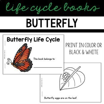 Plant Life Cycle Guided Reading Book