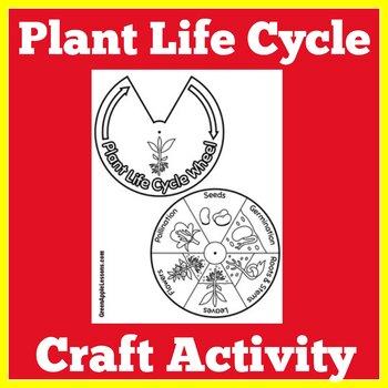 Plant Life Cycle Sequence | Plant Life Cycle Craft | Plant Life Cycle Activity