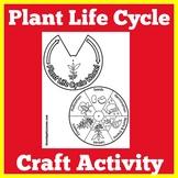Plant Life Cycle | Preschool Kindergarten 1st 2nd 3rd Grad