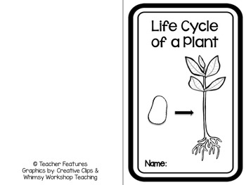 Plant Life Cycle Booklet & Activities by Teacher Features ...