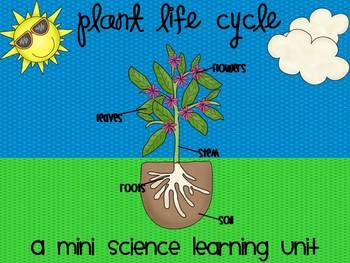 Plant Life Cycle {A Mini Science Learning Unit}