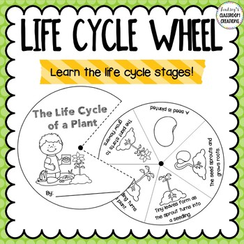 Plant Life Cycle Activities Bundle - Great for science centers!