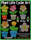 Plant Life Cycle Art Activity Template