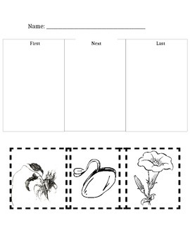 Plant Life Cycle Assessment Cut & Paste
