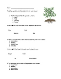 Plant Life Cycle Assessment - Differentiated
