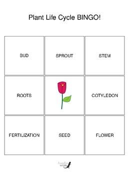 Plant Life Cycle 3 by 3 BINGO!