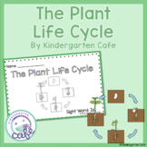 Plant Life Cycle Book