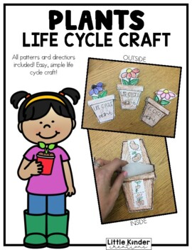 Plant Life Cycle Craft