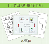 Plant Life Cycle Craftivity