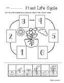 Plant Life Cycle - Cut / Paste Worksheet