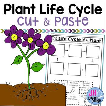 Plant Life Cycle: Cut and Paste