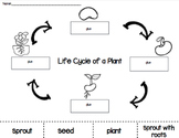 Plant Life Cycle Cut and Paste PACK