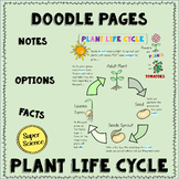 Plant Life Cycle Doodle Pages