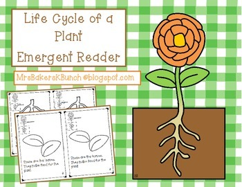 Plant Life Cycle Emergent Reader