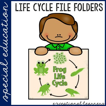 Frog Life Cycle File Folder Activity