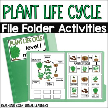 Plant Life Cycle File Folder Activity
