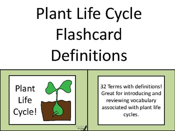 Plant Life Cycle Flashcard Definitions!