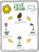 Plants: Plant Life Cycle Activities Flowers and Seeds
