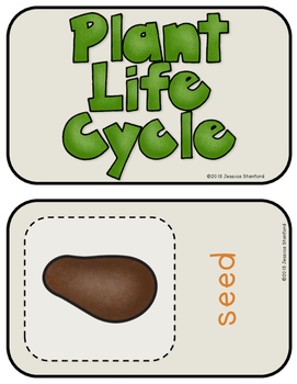 Plant Life Cycle {From Seed to Plant: a Non-Fiction Thematic Unit}