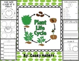 Plant Life Cycle {Informational Writing}