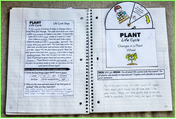 Plant Life Cycle Interactive Notebook - Life Science Series