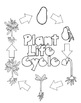 Plant Life-Cycle Journal