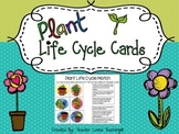 Plant Life Cycle Match Cards