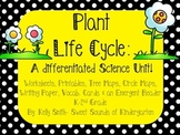 Plant Life Cycle! -Mini Science Unit