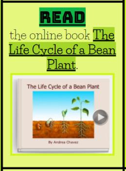 Plant Life Cycle Multi-media Text Set