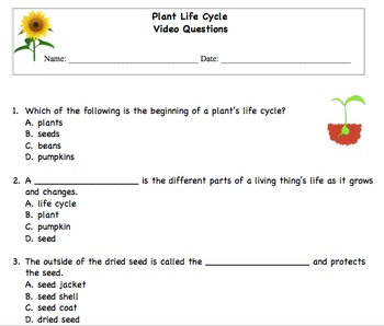 Plant Life Cycle Multiple Choice Questions