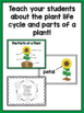 Plant Life Cycle and Parts of a Plant Unit for PreK, Kinder, or First Grade