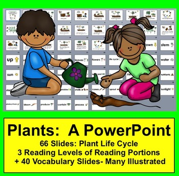 Plant Life Cycle PowerPoint - 3 Reading Levels + 40 Vocabulary Slides w/Pics