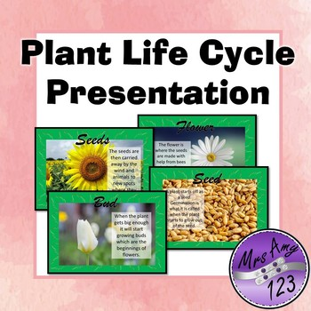 Plant Life Cycle Presentation