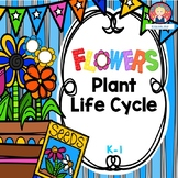 PLANTS MINI UNIT for Kindergarten and First Grade