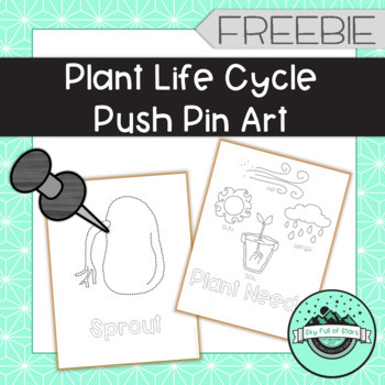 Plant Life Cycle Push Pin Art