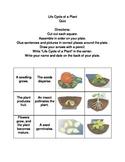 Plant Life Cycle Quiz