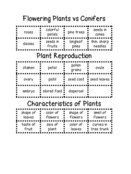Plant Life Cycle Science Sorts