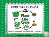 Plant Life Cycle Sort & Vocabulary Activity