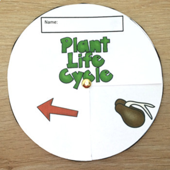 Plant Life Cycle Activities Flip Books Word Walls Sequencing Spinners