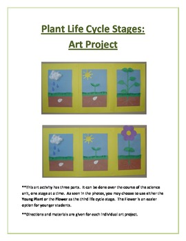 Plant Life Cycle Stages: Art Project/Activity