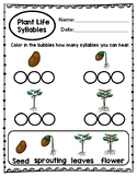 Plant Life Cycle Syllables
