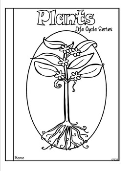 Plant Life Cycle Tab Booklet