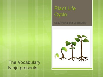 Plant Life Cycle Vocabulary