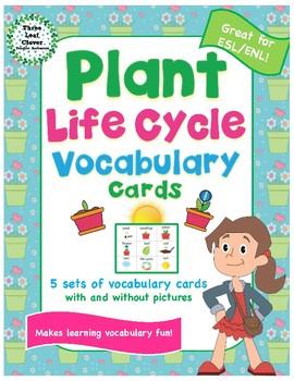 Plant Life Cycle Vocabulary Cards - Great for ESL/ENL